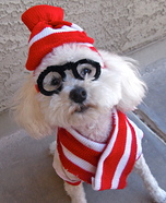 Creative costume ideas for dogs: Where's Waldo Dog Costume