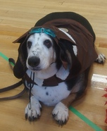 World War 1 Flying Ace Dog's Homemade Costume