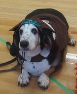 World War 1 Flying Ace Dog's Homemade Costume