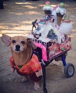 Creative costume ideas for dogs: Wreck-It Ralph and Sugar Rush