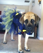 Homemade Cheerleader Costume