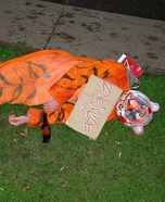 Zanesville Ohio Tiger Costume