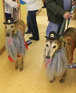 Creative costume ideas for dogs: ZZ Top Dogs Costume