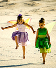 Two Fairies Costume