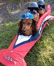 American Bobsled Hotdog Team Costume