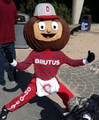 Brutus The Buckeye Homemade Costume