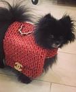 Chanel Bag Homemade Costume