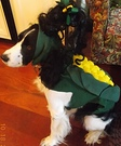 Corn Dog Homemade Costume