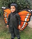 Cute Monarch Butterfly Costume