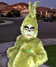 The Grinch Halloween Costume