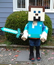 Diamond Minecraft Steve Costume