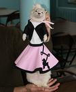 Doo Wop Pet Costume