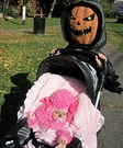 Evil Pumpkin and Pink Poodle Costumes