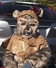 Homemade Ewok Costume for Kids