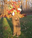 Fall Tree Costume