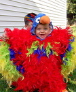 Animal costume ideas for babies - Feathery Fluffy Parrot Baby Costume