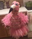 Flamingo Girl's Costume