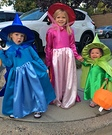 Flora, Fauna and Merryweather Costumes