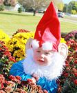 Garden Gnome Homemade Costume