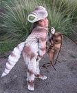 Animal costume ideas for kids - Gecko homemade costume