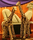 Animal costume ideas for adults - Giraffes Costume