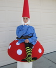 Gnome on a Toad Stool Homemade Costume