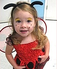 Homemade Lady bug Costume