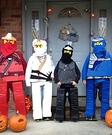 Lego Ninjagos Costume