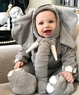 Liam the Elephant Costume