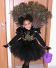 Animal costume ideas for kids - Little Miss Peacock Halloween Costume