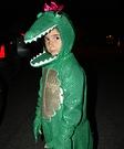 Animal costume ideas for kids - Little Ms. Alligator Halloween Costume