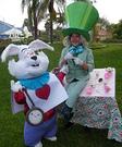 Mad Hatter & White Rabbit Costumes