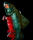 Animal costume ideas for adults - Maine Brook Trout Halloween Costume