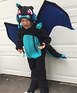 Mega Charizard X Homemade Costume