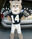 Homemade Cougar Mascot Costume for Boys