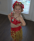 Moana the Voyager Costume