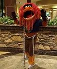 Homemade Muppets Animal costume