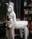 Mystical Unicorn Costume