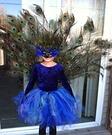 Homemade Peacock Costume