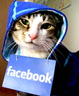 Facebook Hoodie Costume for Cat