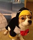 Penguin Puppy Costume