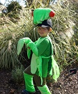 Animal costume ideas for kids - Praying Mantis Homemade Costume