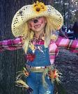 Scarecrow Halloween Costume Idea for Girls
