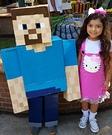 Steve Minecraft Costume