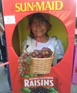 Sun Maid Raisin Box Homemade Costume