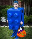 The Blue Lego Costume
