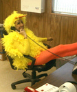 DIY Chick Costume