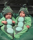 Two Peas in a Pod Homemade Costume