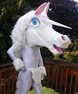 Animal costume ideas for adults - DIY Unicorn Costume
