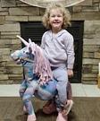 Unicorn Rider Costume